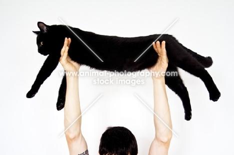 Man holding black cat