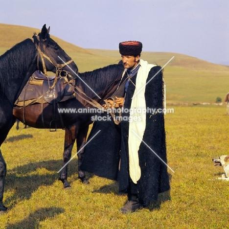 cossack with Kabardine horses in Caucasus mountains