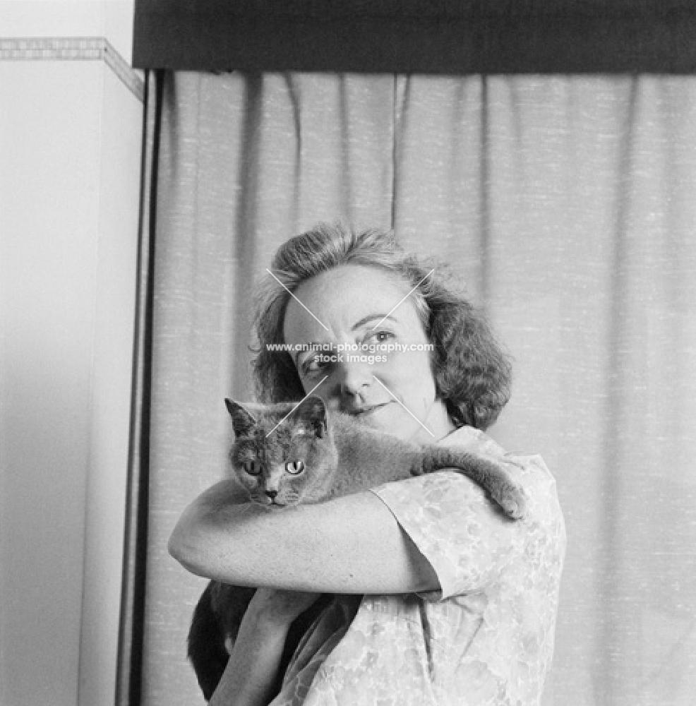 owner holding her blue cream cat