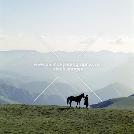 Kabardine stallion with cossack in Caucasus mountains