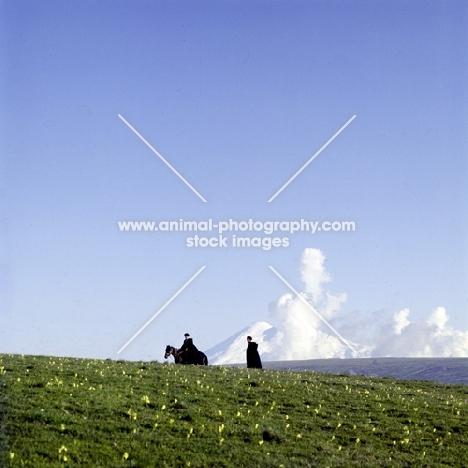 kabardine stallion ridden by cossack near malokarachaev