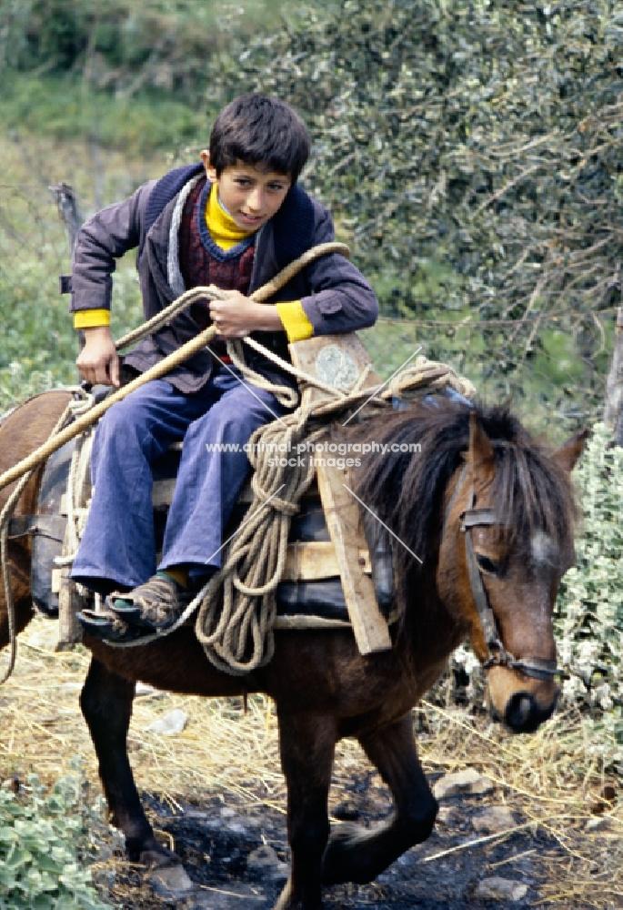 child riding skyros pony on skyros island, greece
