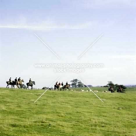 hunting, vale of aylesbury hunt