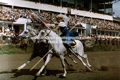tersk racing