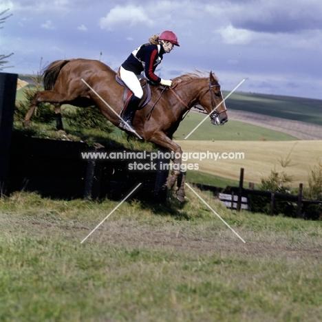 wylye horse trials cross country