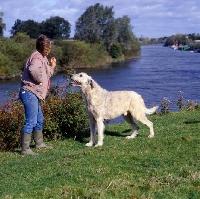 Picture of zena thorn-andrews posing her irish wolfhound